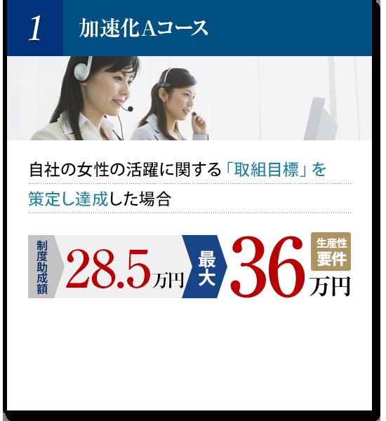 加速化Aコース:自社の女性の活躍に関する「取組目標」を策定し達成した場合(常時雇用労働者が300人以下の事業主のみ対象)